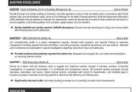 Sample Resume For Internal Auditor by Internal Audit Resume Objective Reentrycorps