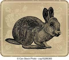 vintage rabbit vintage menu with rabbit drawing vector illustration clip