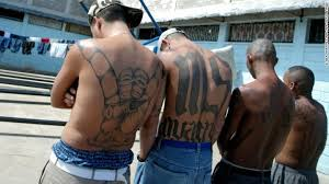 ms 13 gang members trump makes ms 13 gang stronger cnn