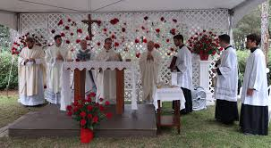 novena of thanksgiving in thanksgiving for a beautiful day u2013 illumina domine blog