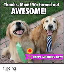 Meme Mothers Day - thanks mom we turned out awesome happy mothers day con 1 going