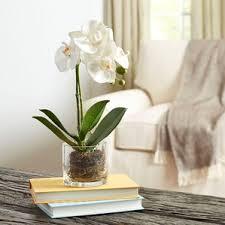 faux orchids artificial orchids you ll wayfair