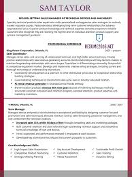 Sample Sales Manager Resume sales manager resume example u2022