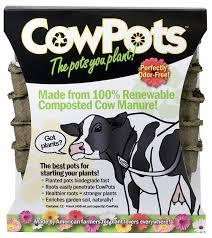 amazon com cowpots 4 inch square 12 pack cow pots garden