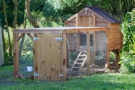 Easy Backyard Chicken Coop Plans by Build A Backyard Chicken Coop Care2 Healthy Living