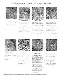 the f b i fingerprint types vary significant among ethnic