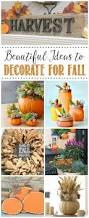 simple thanksgiving decorations 191 best fall favorites decor food u0026 more images on pinterest