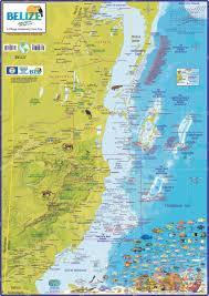 bird island belize rental belize dive site maps u0026 belize diving areas maps u0026 more belize