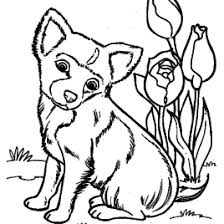 coloring book page dog kids drawing and coloring pages marisa