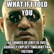 50 Shades Of Gray Meme - fifty shades of grey meme picture