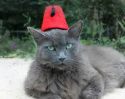 Cat Halloween Costumes Cats Puss Boots Pet Hat Wool Hand Felted Cat Costume Cat