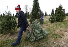 central ohio christmas tree farms ready to welcome shoppers