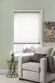 Vertical Blinds For Living Room Window Living Room Nice Levolor Blinds For Modern Middle Room Ideas