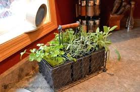 lights to grow herbs indoors kitchen herb garden indoor coryc me