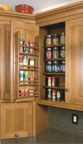 wall spice cabinet with doors spice rack on wall cabinet door craftsman kitchen cleveland