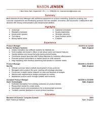 Marketing Manager Resume Purchasing Manager Resume Example Procurement Executive Sample