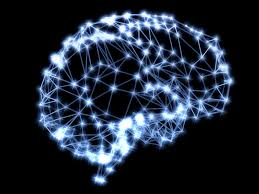 Games Like Home Design Story Brain Games Don U0027t Work According To A New Study Fortune