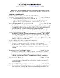 resume examples cv sample templates rso resumes media planner