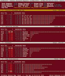 http access log analyzer goaccess a real time apache and nginx web server log analyzer
