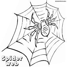 spider coloring pages coloring pages to download and print