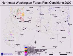 Washington State Area Code Map by Region 6 Insects U0026 Diseases
