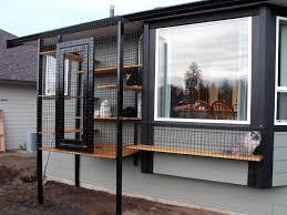 cat patio ideas home design image interior amazing ideas and cat