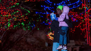 christmas lights at the zoo indianapolis help indianapolis zoo s christmas at the zoo reach no 1