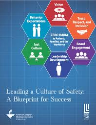 leading a culture of safety a blueprint for success national