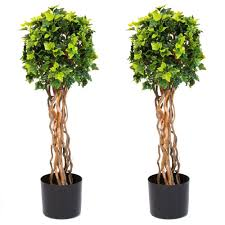 topiary trees garden 30 in single topiary tree 2 pack 50