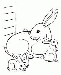 85 Best Kleurplaten Konijnen Images On Pinterest Coloring Rabbit Colouring Page