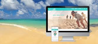 antsy ant web design website designer in honolulu hawaii