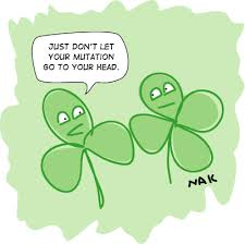 Happy St Patricks Day Meme - biolegend happy st patrick s day may all your experiments