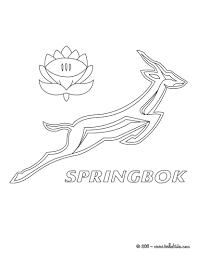 rugby team coloring page 30 9u9 m9n jpg 820 1060 springboks