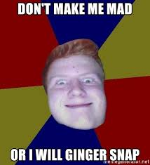 Ginger Snap Meme - don t make me mad or i will ginger snap chrisginger meme generator