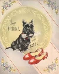 14293977 dogs animal a scottish terrier a vector it is isolated on