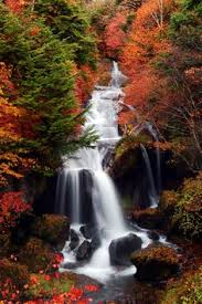 fall color beautiful multnomah falls columbia river