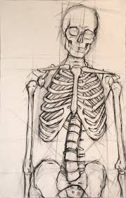 best 25 skeleton drawings ideas on pinterest skeleton anatomy