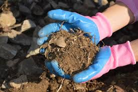 Fiber Soil by Healthy Soils Are Full Of Life U2013 Wildlife Leadership Academy