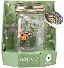 butterfly gifts butterfly in a jar realistic butterflies butterfly gifts