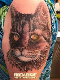 cat portrait by kent mcknight white tiger