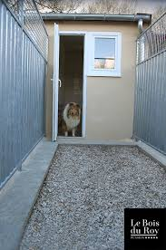 chambre sur cour chambre avec cour pension pour chiens le bois du roy