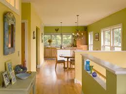 Yellow And Green Kitchen Ideas Kitchen Amusing Yellow And Green Kitchen Colors Farmhouse Yellow