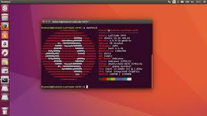how to install program on ubuntu january 2017