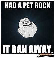Pet Rock Meme - forever alone had a pet rock forever alone pinterest meme