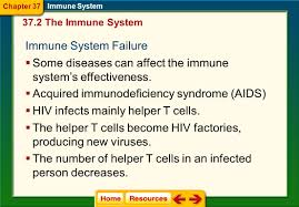 chapter 37 immune system section 1 infectious diseases ppt