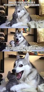 Imgur Meme Maker - pun dog imgur puppies pinterest pun dog dog and memes