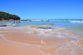 curl curl manly u0026 northern beaches australia