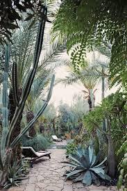 Beautiful Garden Pictures