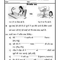 hindi grammar kaarak worksheet worksheets for kids