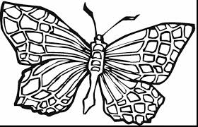 superb printable coloring page butterfly colouring with teenage